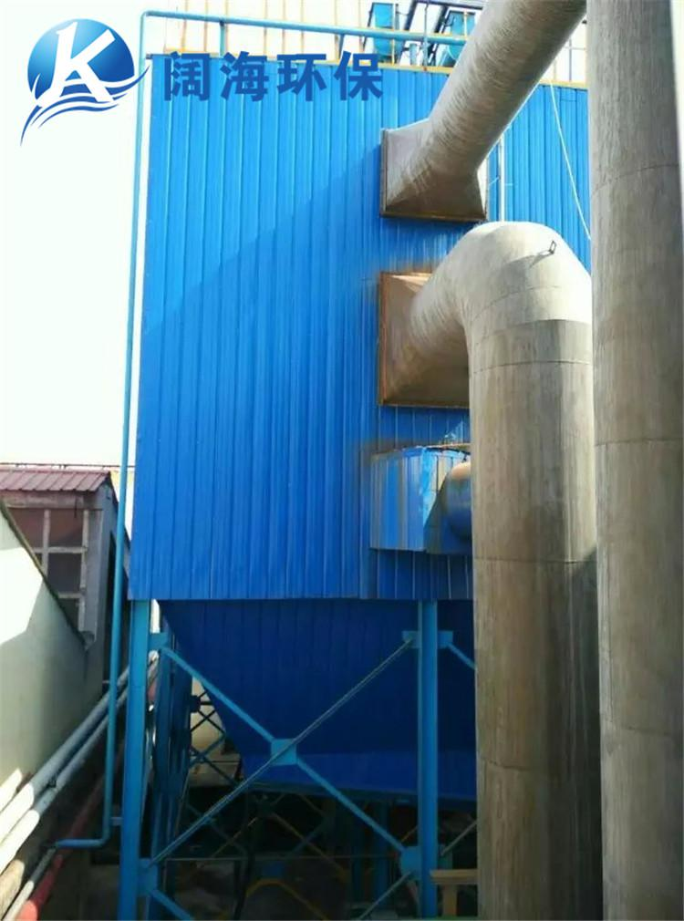 20吨锅炉布袋除尘器